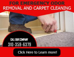 Rug Cleaning Service - Carpet Cleaning Marina del Rey, CA